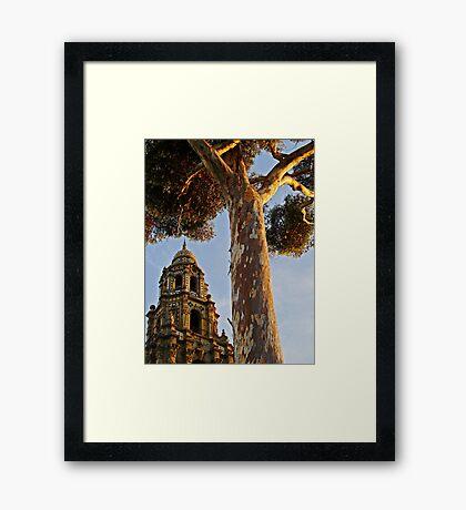 Balboa Park Textures Framed Print