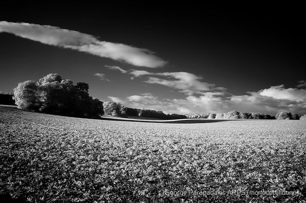 Rolling countryside by George Parapadakis ARPS (monocotylidono)