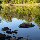 Silent Reflections by NatureGreeting Cards ©ccwri