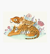 Tiger and little cub Photographic Print