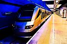 Gautrain - High Speed Train Travel in Africa by RatManDude