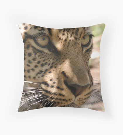 The Eyes Of A Cat Throw Pillow
