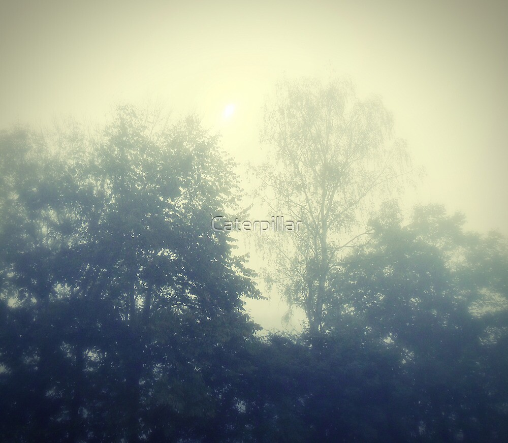 Sunday in the mist by Caterpillar