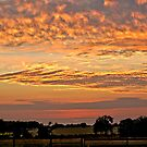 Sunset on the Farm by Pat Moore