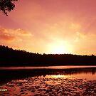 Sunset by ravishankar82