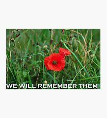 REMEMBERANCE DAY POPPY Photographic Print