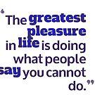 the greatest pleasure in life by bernArt