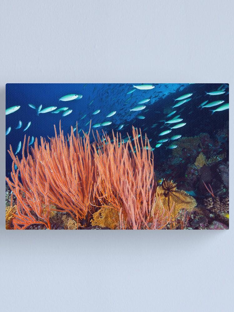 Alternate view of Wheeler Reef garden Canvas Print
