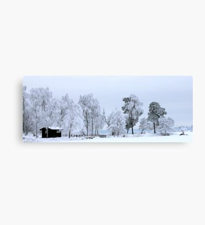 Winter landscape - Sweden Canvas Print