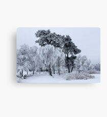 Silken painting - winter Canvas Print