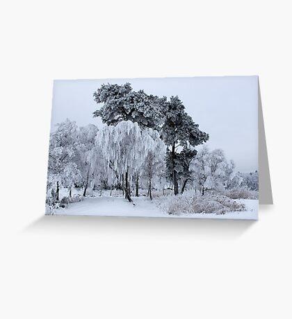 Silken painting - winter Greeting Card
