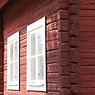 Red wood by LadyFi