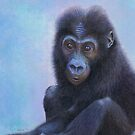 Muhali, Baby Gorilla by Karen  Hull