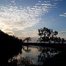 Round the bend - Crab Creek, Kowanyama by Felicity Hayward