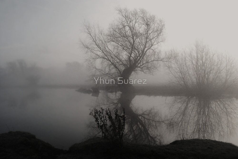 In The Mist by Yhun Suarez