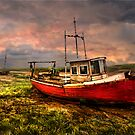 On The Estuary by Brian Tarr