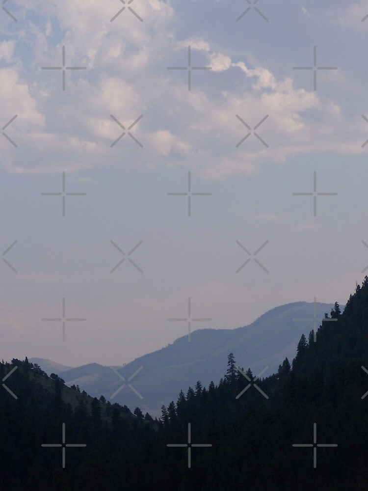 North Fork Burnt River Canyon by Betty  Town Duncan