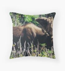 Moose on Cabot Trail in Nova Scotia Throw Pillow