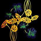 nasturtium on black by clemfloral