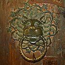 Ancient Door Knocker by Lee d'Entremont
