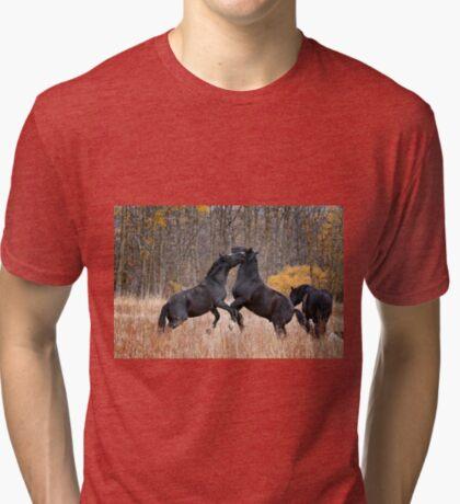 Horsing Around Tri-blend T-Shirt
