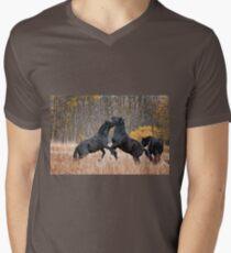Horsing Around Mens V-Neck T-Shirt
