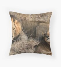 What a handsome couple!(I love you!) Throw Pillow