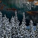 Barrier Lake Winter Scene by Justin Atkins