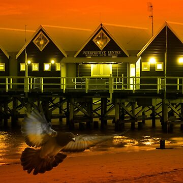 Jetty Lights by phil1509