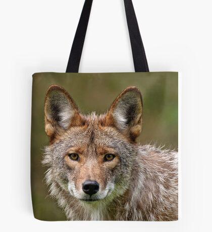 Coyote Portrait  Tote Bag