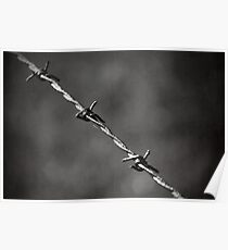 'barbed' Poster