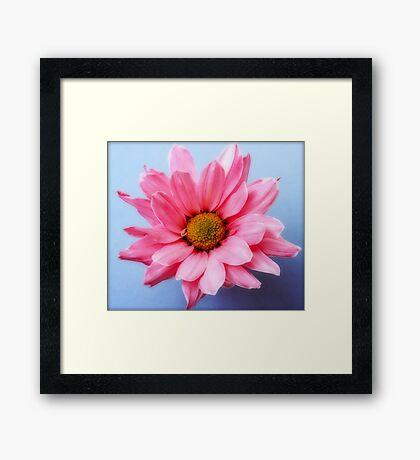 Untitled cute pink flower Framed Print