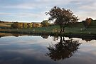 Autumn In Thorlby Near Skipton by SteveMG
