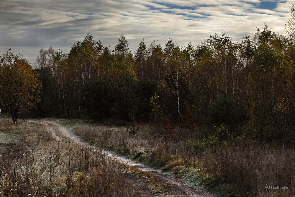 Small path (Autumn 2010) by Antanas