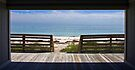 Doorway to the Beach - Bahia Honda, Florida by Debbie Pinard