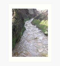 TO THE RIVER Art Print