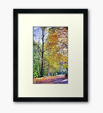 Autumn down the Glen Framed Print