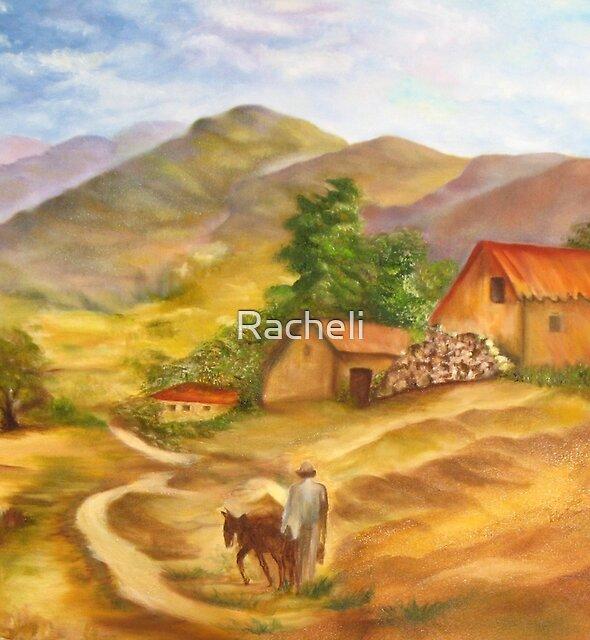 A farmer on the Galilee by Racheli