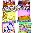 California Polaroids by dadawan