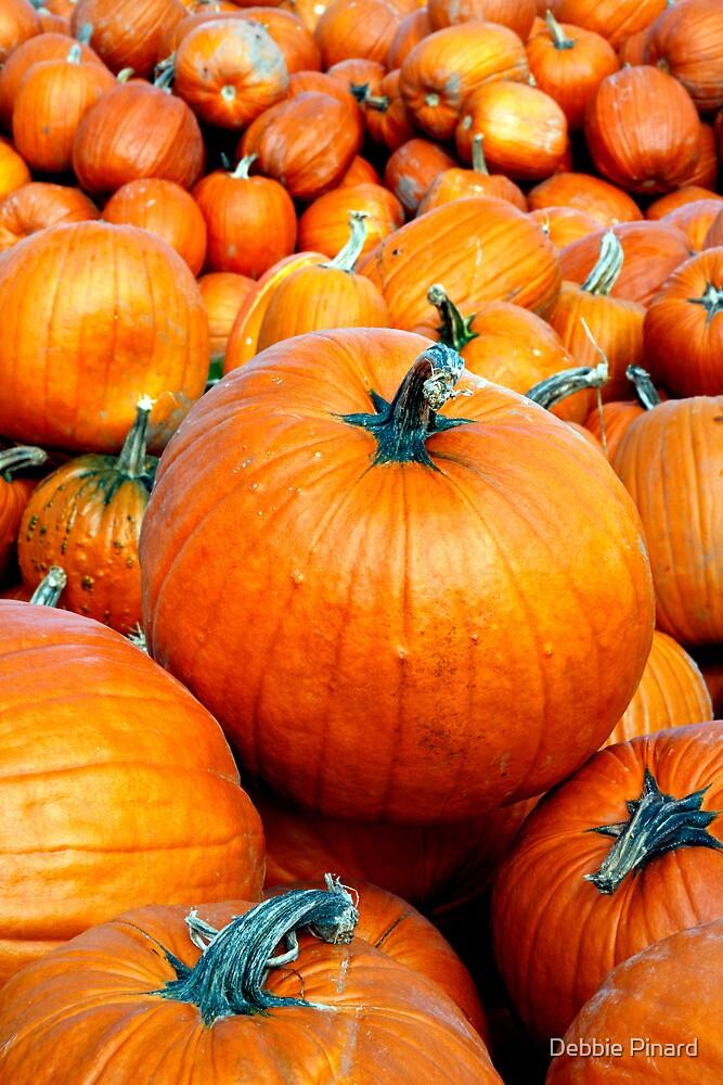 The Perfect Pumpkin - Manotick, Ontario by Debbie Pinard
