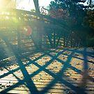 Bridging the Gap by Alan Hyland