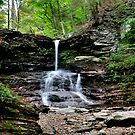 Tuscarora Falls  by Debra Fedchin