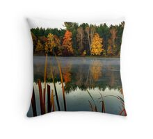 Memories are Reflected Throw Pillow
