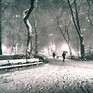 Snow - Madison Square Park - New York City by Vivienne Gucwa
