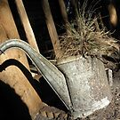 Old Holey Water Can by nobettertime