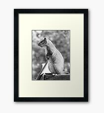 A mother's work is never done Framed Print