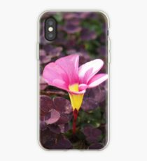 Pink Oxalis Flower iPhone Case