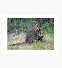 Tammar Wallaby & Joey at Baudin Conservation Park - Kangaroo Island, South Australia Art Print