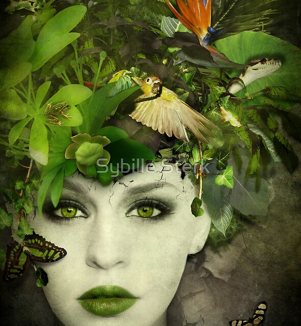 It's A Jungle In There! by Sybille Sterk