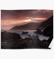 Wellingtons wild south coast Poster